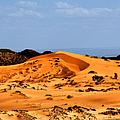 Coral Pink Sand Dunes Utah by Christine Till