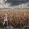 Corn Field Horror by Jt PhotoDesign