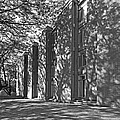 Cornell College Tarr Hall by University Icons