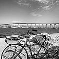 Coronado Bridge Bike by Peter Tellone