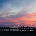 Costa Rican Sunset by Adam Romanowicz