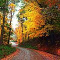Country Autumn Gravel Road by Julie Dant