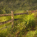 Country - Fence - County Border  by Mike Savad