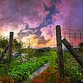 Country Garden by Debra and Dave Vanderlaan