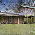 Country Life by Betty LaRue