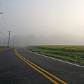 Country Road In Fog by Olivier Le Queinec