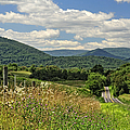 Country Roads Take Me Home by Lara Ellis