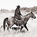 Cowboy And Dogs by Cindy Singleton
