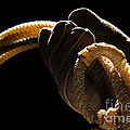 Cowboy Hand Holding Lasso by Olivier Le Queinec