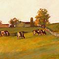 Cows2 by J Reifsnyder