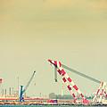 Cranes by Gabriela Insuratelu