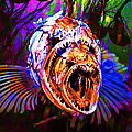 Creatures Of The Deep - Fear No Fish 5d24799 V2 by Wingsdomain Art and Photography