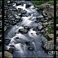 Creek Flow Polyptych by Peter Piatt