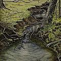 Creek  by Janet Felts