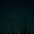 Crescent Moon by Jessica Brown