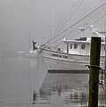 Crimson Tide In The Mist by Michael Thomas