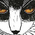 Cross Kitty by Kerrie  Hubbard