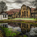 Crucis Abbey by Adrian Evans