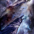 Cry Of The Raven by Carol Cavalaris