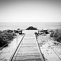Crystal Cove Overlook Black And White Picture by Paul Velgos