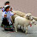 Cuenca Kids 233 by Al Bourassa