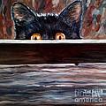 Curiosity by Julie Brugh Riffey