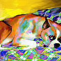 Cute Boxer Dog portrait painting Print by Svetlana Novikova
