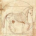 da Vinci Horse in Piaffe by Catherine Twomey