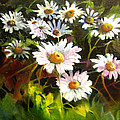 Daisies by Robert Carver