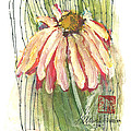 Daisy Girl by Sherry Harradence
