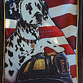 Dalmatian The Firefighters Mascot by Paul Ward