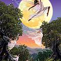 Dance Of The Moon Fairy by Garry Walton