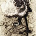 Dancing Rose by Ron Regalado
