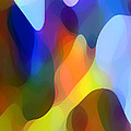 Dappled Light Print by Amy Vangsgard