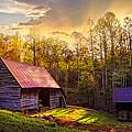 Daybreak on the Farm