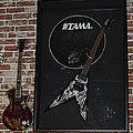 Death By Stereo Band Memorabilia-autographed Guitar by Renee Anderson