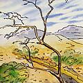Death Valley- California Sketchbook Project by Irina Sztukowski