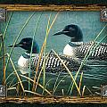 Deco Loons by JQ Licensing