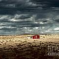 Desert Landscape by Julie Lueders