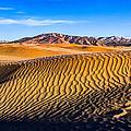 Desert Lines by Chad Dutson