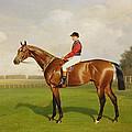 Diamond Jubilee Winner Of The 1900 Derby by Emil Adam