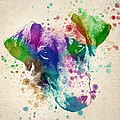 Doberman Splash Print by Aged Pixel