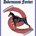 Dobermanns Forever - The Next One Hundred Years by Rita Kay Adams