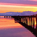 Dock at Cold Bay