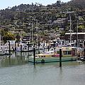 Docks At Sausalito California 5d22697 by Wingsdomain Art and Photography