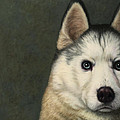 Dog-nature 9 by James W Johnson