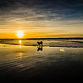 Doggy Sunset by Puget  Exposure