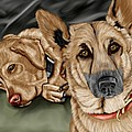 Dogs by Karen Sheltrown