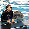 Dolphin Show - National Aquarium In Baltimore Md - 1212230 by DC Photographer