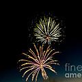 Double Fireworks Blast Print by Robert Bales